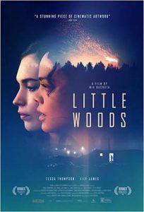 دانلود فیلم زیرنویس فارسی جنگل کوچک Little Woods 2018