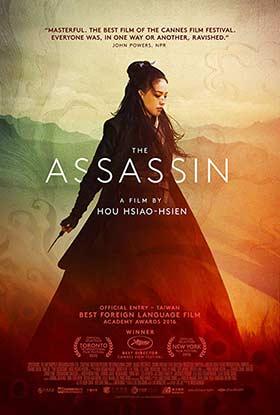 دانلود رایگان فیلم The Assassin 2015